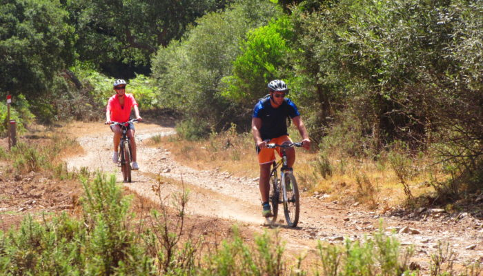 See Algarve's Local flora and Fauna up close on a guided bike tour