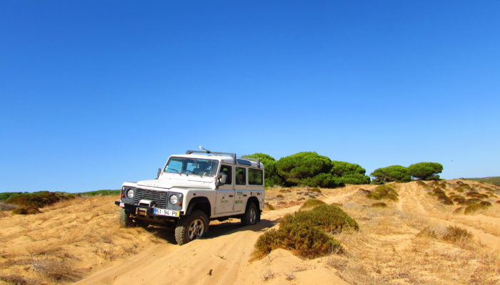 Sand Dunes of Algarve in a Jeep