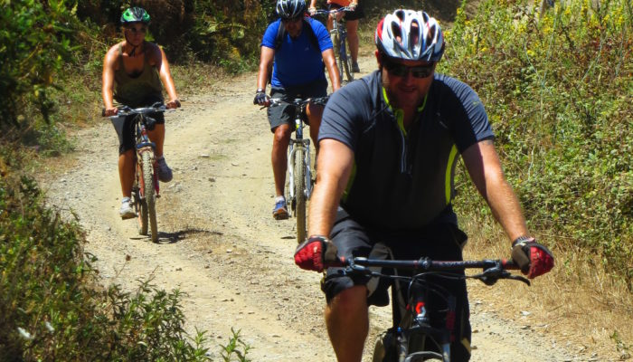 See local ecology and wildlife of Algarve, Portugal on a bike
